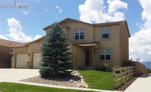 7976 Mount Hayden Drive, Colorado Springs, CO 80924 (#1858706) :: 8z Real Estate