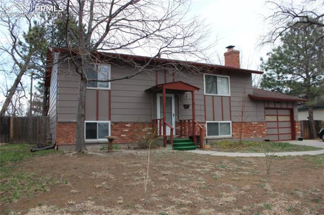 4215 Leyden Lane, Colorado Springs, CO 80907 (#1859145) :: CC Signature Group