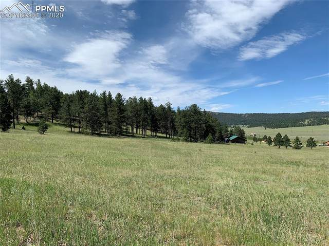 1921 S Mountain Estates Road, Florissant, CO 80816 (#1862754) :: Colorado Home Finder Realty