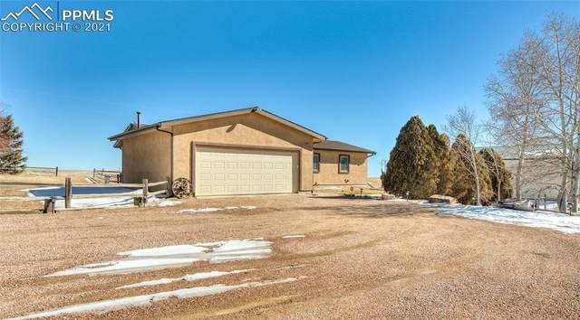 11725 Peaceful Valley Road, Colorado Springs, CO 80925 (#1865077) :: 8z Real Estate