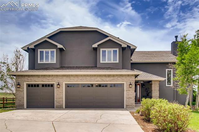 17380 Leggins Way, Monument, CO 80132 (#1870928) :: The Daniels Team
