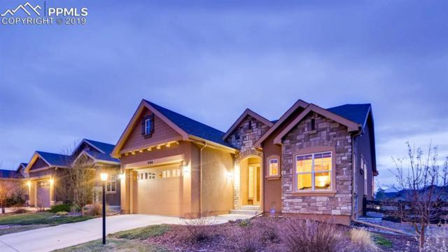 9194 Dome Rock Place, Colorado Springs, CO 80924 (#1871555) :: The Treasure Davis Team