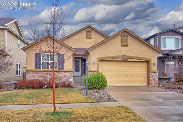 5050 Petrified Forest Trail, Colorado Springs, CO 80924 (#1873345) :: The Treasure Davis Team