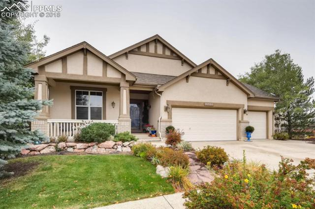 10584 Black Elk Way, Colorado Springs, CO 80908 (#1873773) :: 8z Real Estate