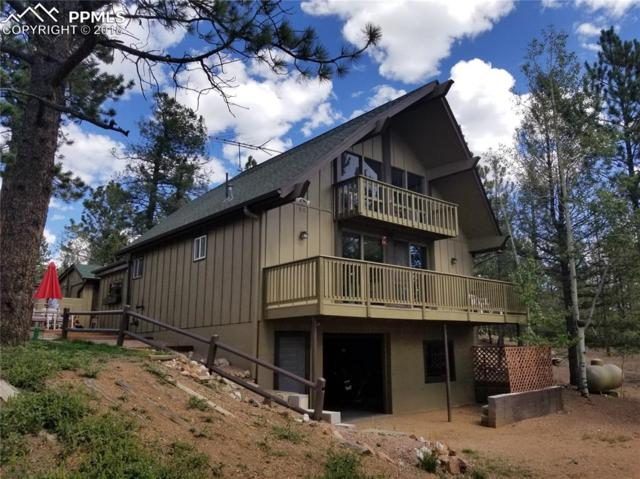 91 Alpine Road, Woodland Park, CO 80863 (#1875297) :: Action Team Realty