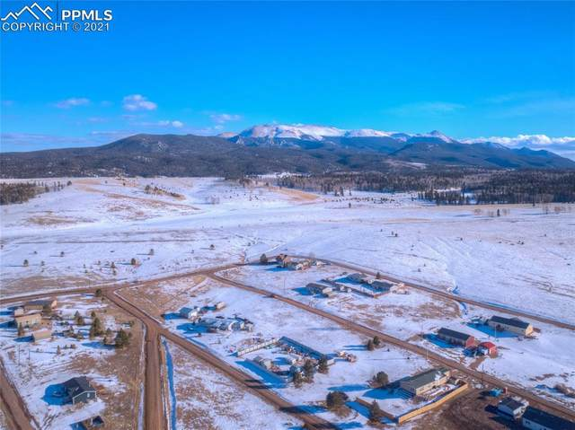1421 Will Scarlet Drive, Divide, CO 80814 (#1876620) :: CC Signature Group