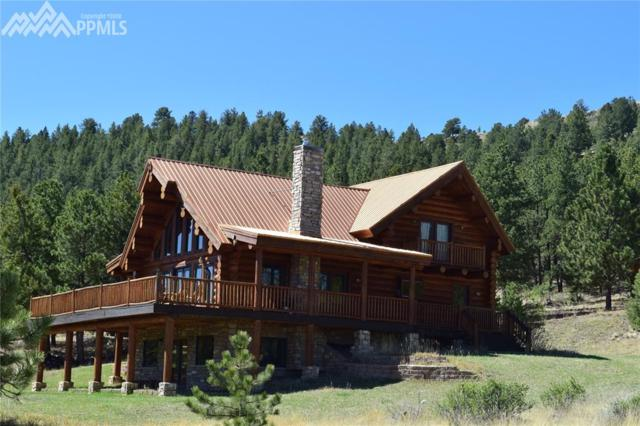 33 Spruce Lane, Canon City, CO 81212 (#1884665) :: Harling Real Estate