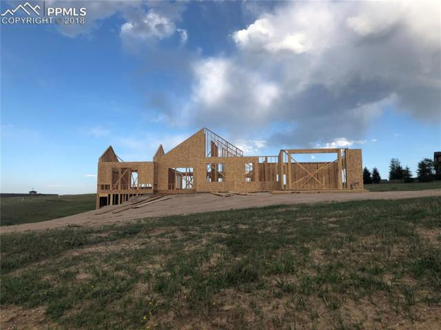 19889 Royal Troon Drive, Monument, CO 80132 (#1887047) :: Fisk Team, RE/MAX Properties, Inc.