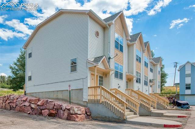 66 Vale Circle, Palmer Lake, CO 80133 (#1887797) :: Tommy Daly Home Team