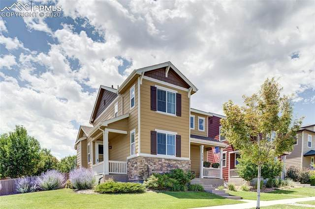3678 Cadence Drive, Castle Rock, CO 80109 (#1893410) :: 8z Real Estate