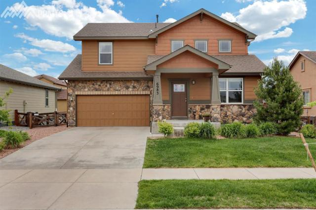 6983 Mountain Spruce Drive, Colorado Springs, CO 80927 (#1893634) :: CENTURY 21 Curbow Realty