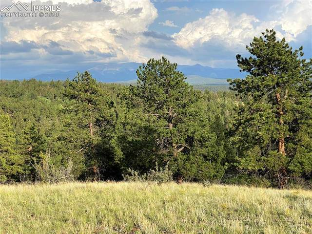 TBD Wildhorn Road, Florissant, CO 80816 (#1894558) :: CC Signature Group