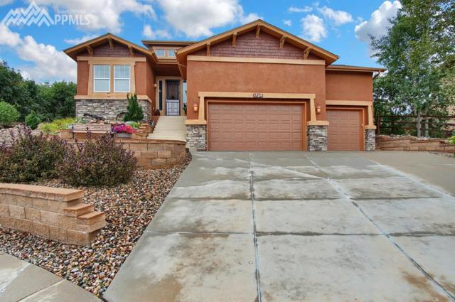 1133 Glengary Place, Colorado Springs, CO 80921 (#1896222) :: 8z Real Estate