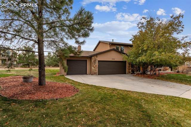 13920 Westchester Drive, Colorado Springs, CO 80921 (#1900919) :: The Daniels Team