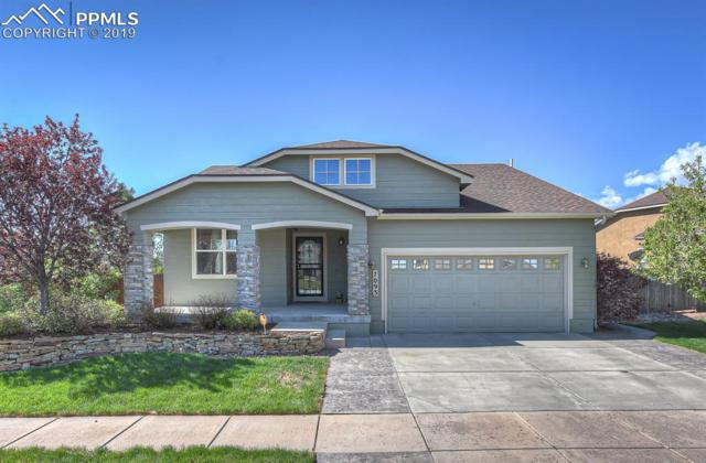7093 Wood Lily Drive, Colorado Springs, CO 80923 (#1902391) :: Venterra Real Estate LLC