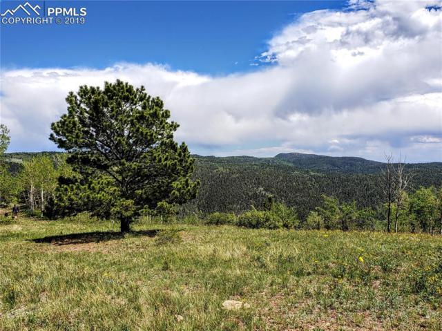 County 863 Road, Victor, CO 80860 (#1902618) :: Fisk Team, RE/MAX Properties, Inc.