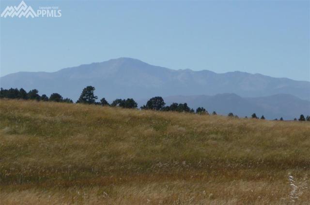 16238 Open Sky Way, Colorado Springs, CO 80908 (#1902973) :: The Treasure Davis Team