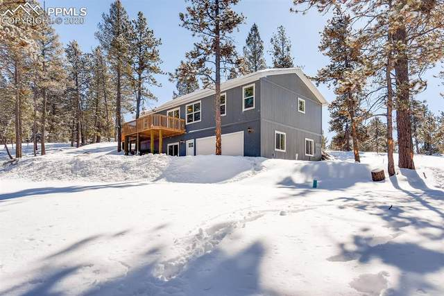37 Carbon Circle, Florissant, CO 80816 (#1908856) :: Action Team Realty