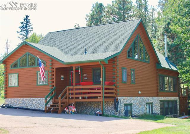741 Sunnywood Place, Woodland Park, CO 80863 (#1909041) :: 8z Real Estate