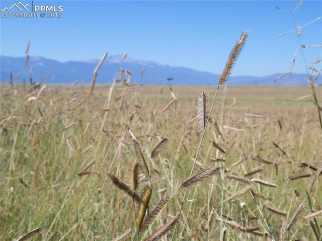 Lot 6 S Franceville Coal Mine Road, Colorado Springs, CO 80929 (#1909181) :: Action Team Realty