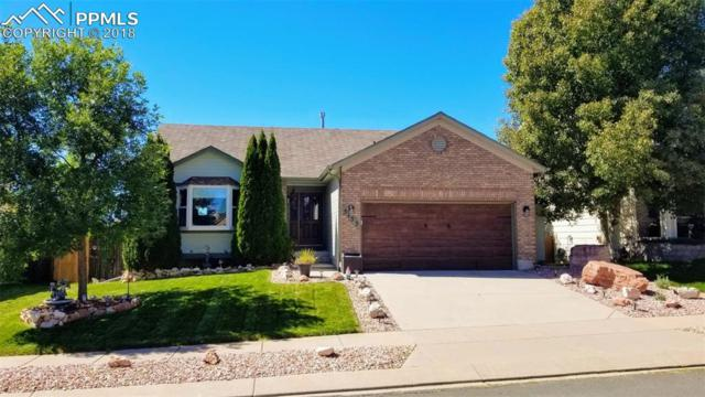 5153 Spotted Horse Drive, Colorado Springs, CO 80923 (#1911597) :: 8z Real Estate