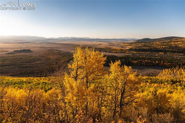 23138 County Road 59, Hartsel, CO 80449 (#1912682) :: Finch & Gable Real Estate Co.
