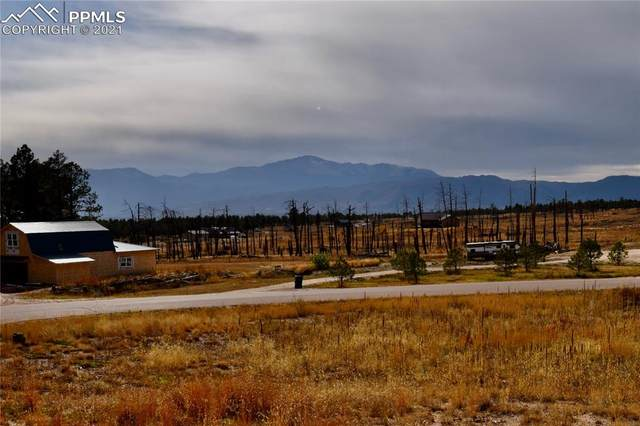 5610 Molly Court, Colorado Springs, CO 80908 (#1914172) :: CC Signature Group