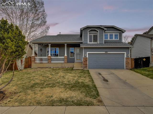 2985 Mule Shoe Drive, Colorado Springs, CO 80922 (#1917302) :: The Artisan Group at Keller Williams Premier Realty