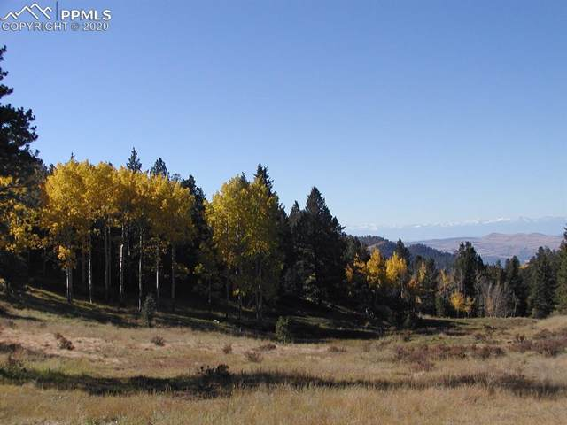 TBD Teller 1 Road, Cripple Creek, CO 80813 (#1923638) :: 8z Real Estate