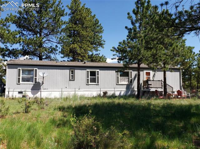 420 Arapahoe Drive, Florissant, CO 80816 (#1925000) :: Jason Daniels & Associates at RE/MAX Millennium