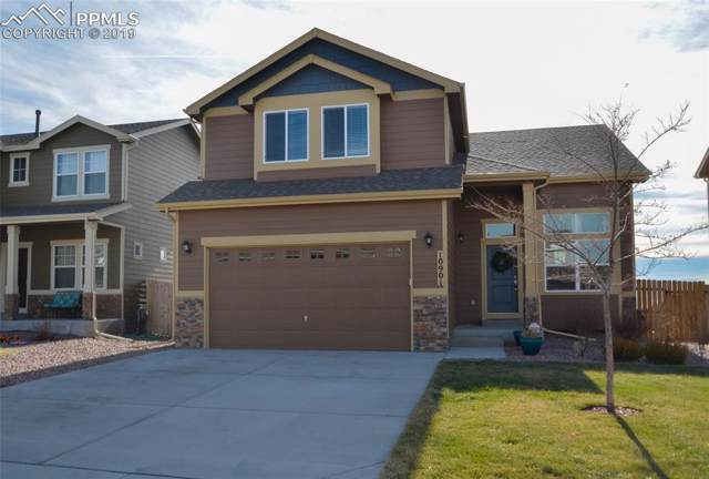 10901 Scenic Brush Drive, Peyton, CO 80831 (#1925994) :: The Treasure Davis Team