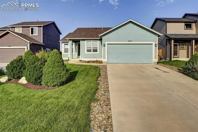 4019 Roan Drive, Colorado Springs, CO 80922 (#1926036) :: 8z Real Estate