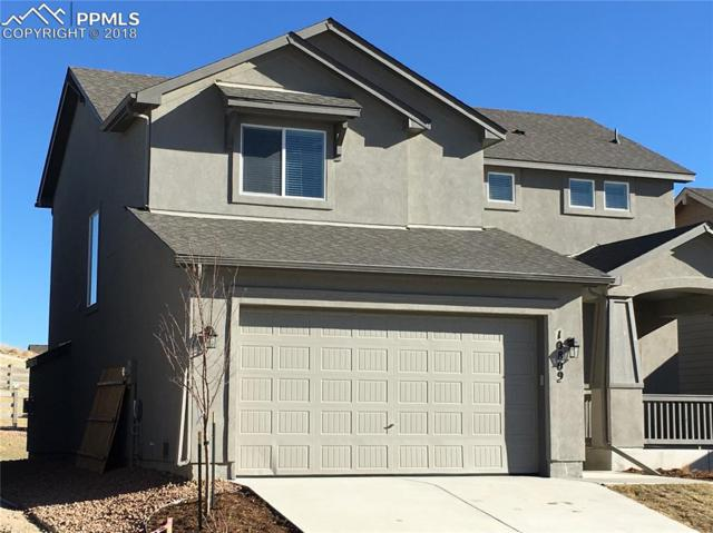 10809 Warm Sunshine Drive, Colorado Springs, CO 80908 (#1927561) :: The Kibler Group