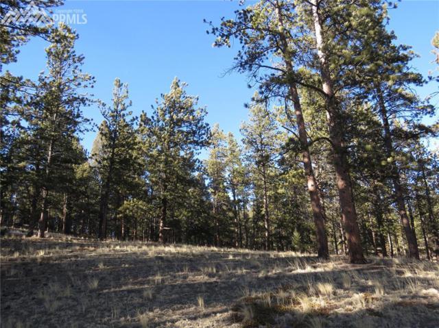 39 Rabbil Creek Trail, Florissant, CO 80816 (#1931834) :: The Treasure Davis Team