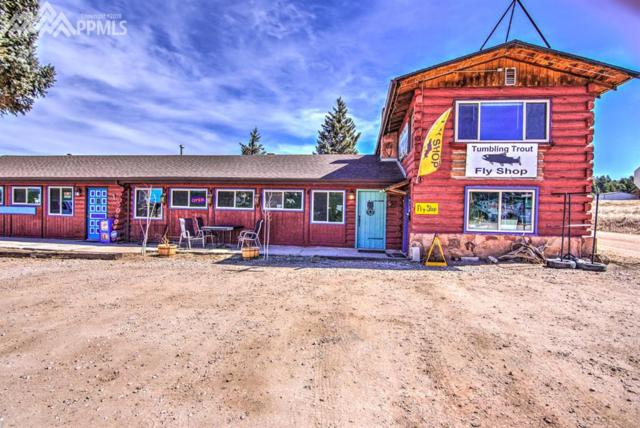 38283 W Highway 24 Highway, Lake George, CO 80827 (#1939675) :: Action Team Realty