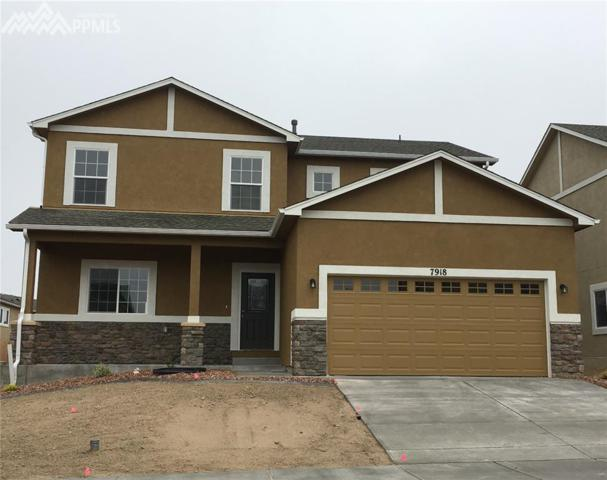 7918 Martinwood Place, Colorado Springs, CO 80908 (#1944548) :: The Treasure Davis Team