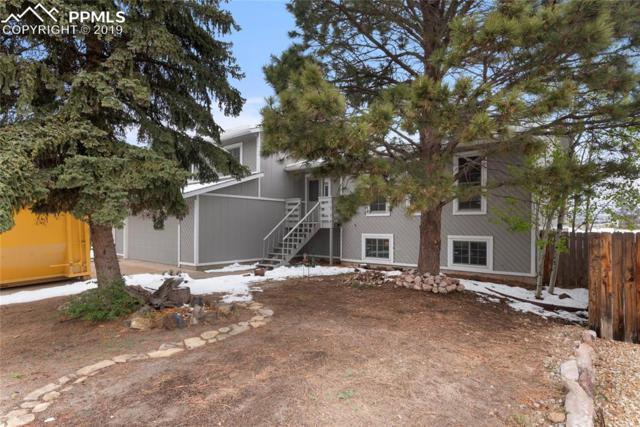 2870 Purgatory Drive, Colorado Springs, CO 80918 (#1945539) :: Tommy Daly Home Team