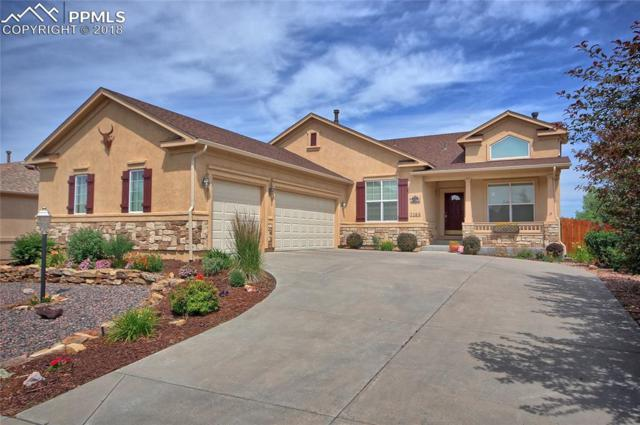 7188 Doc Holiday Drive, Colorado Springs, CO 80923 (#1946661) :: Action Team Realty