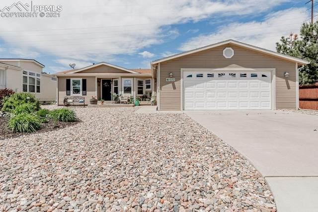 4648 Pika Point, Colorado Springs, CO 80922 (#1952714) :: Fisk Team, eXp Realty