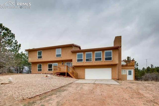 3210 Talbot Drive, Monument, CO 80132 (#1954034) :: Tommy Daly Home Team