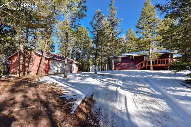 112 Denwood Drive, Florissant, CO 80816 (#1954090) :: Jason Daniels & Associates at RE/MAX Millennium