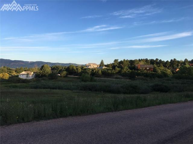 815 S South Park Drive, Monument, CO 80132 (#1955294) :: The Peak Properties Group