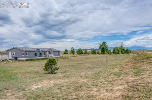 20917 Goldeneagle Drive, Calhan, CO 80808 (#1956873) :: The Peak Properties Group