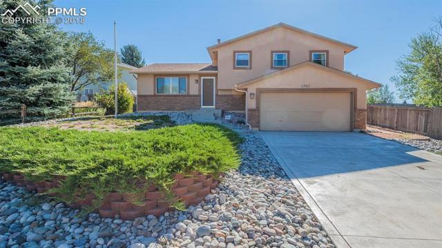 1395 Shadberry Court, Colorado Springs, CO 80915 (#1957605) :: The Treasure Davis Team