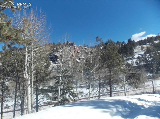 6621 County Road 1, Cripple Creek, CO 80813 (#1961006) :: Hudson Stonegate Team