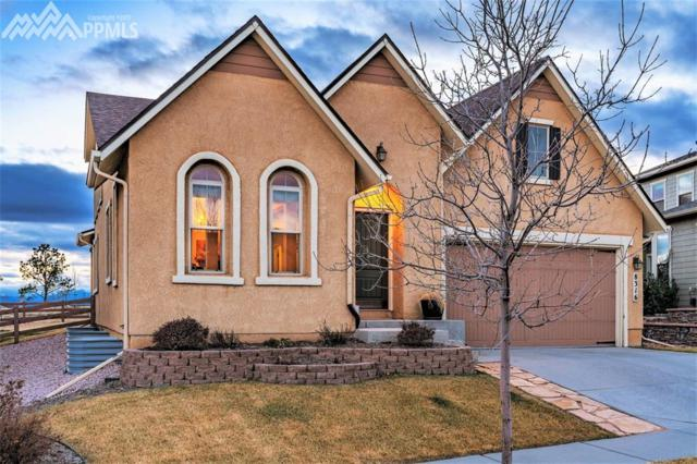 8316 James Creek Drive, Colorado Springs, CO 80924 (#1963733) :: The Treasure Davis Team