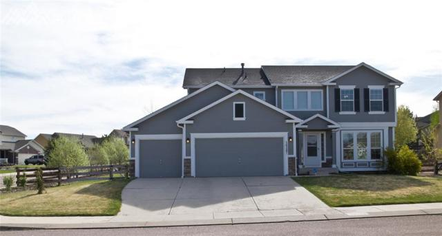 16287 Windsor Creek Drive, Monument, CO 80132 (#1965174) :: The Treasure Davis Team