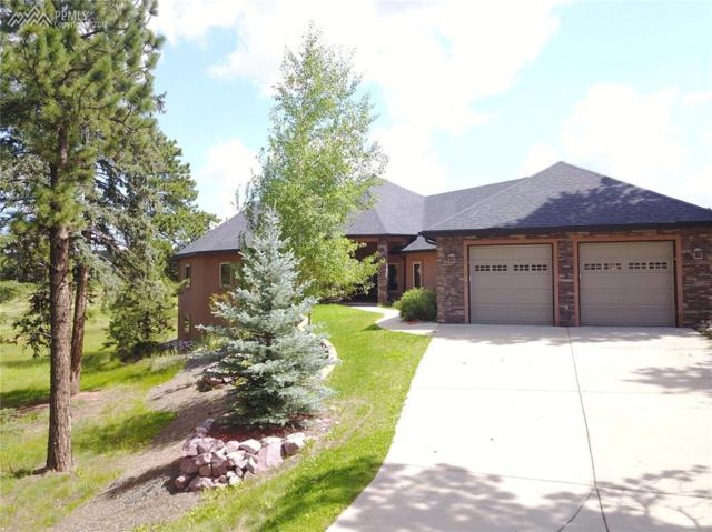 1423 Masters Drive, Woodland Park, CO 80863 (#1965989) :: 8z Real Estate