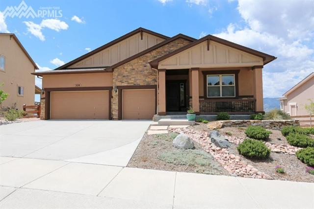 229 Kettle Valley Way, Monument, CO 80132 (#1969627) :: The Daniels Team