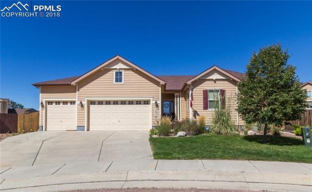 14674 Air Garden Lane, Colorado Springs, CO 80921 (#1971873) :: The Treasure Davis Team